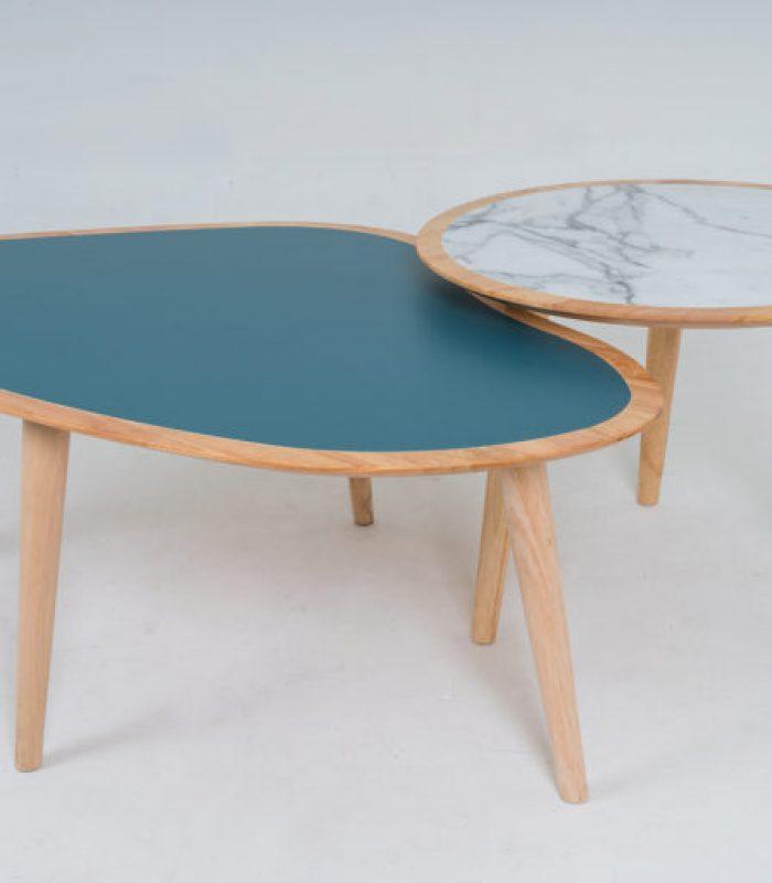 Coffee Table - DSC00007